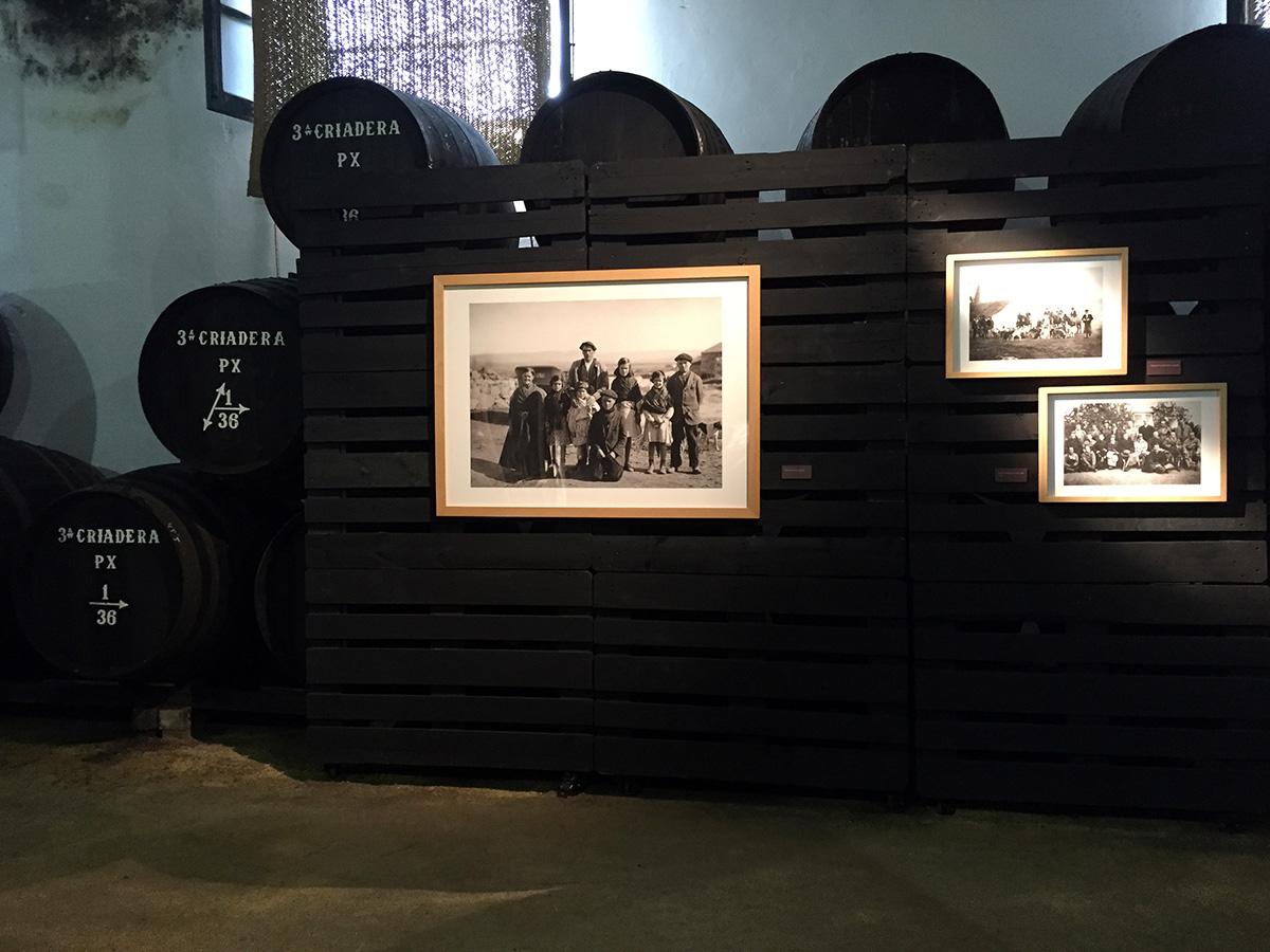 Blog Bodegas Tradición - Jerez de la Frontera, tierra de vinos centenarios